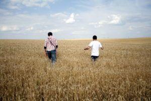 Relações interpessoais na extensão rural e assistência técnica